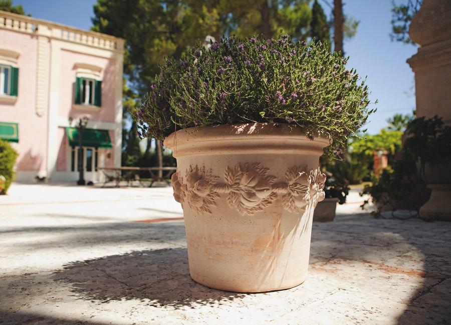 Rinascimento Abruzzo Vasi