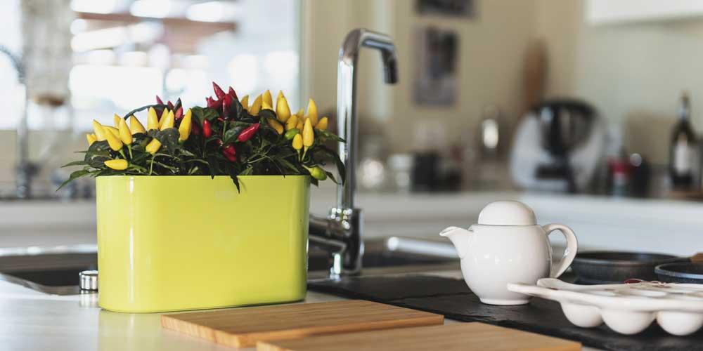 vaso-giallo-per-peperoncini-vasar