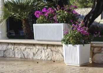 vaso giardinaggio