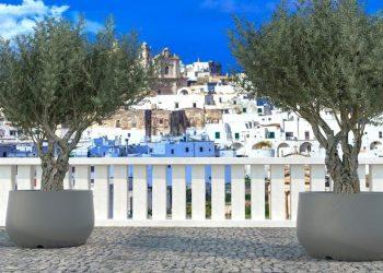 Vaso per albero di ulivo Vasar Acaya
