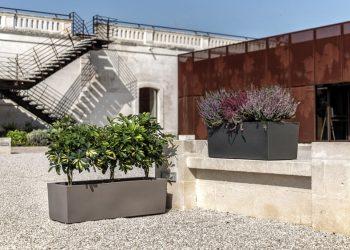 giardino xeriscaping vasi